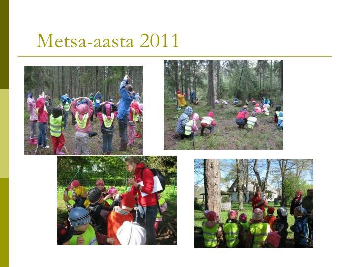 Metsa-aasta 2011