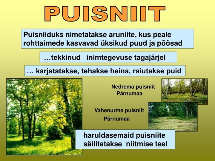 PUISNIIT