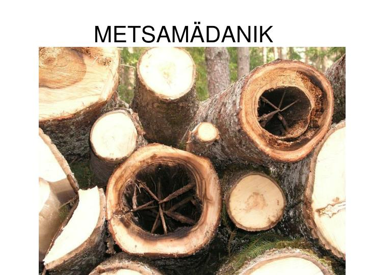 METSAMÄDANIK