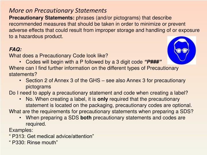 More on Precautionary Statements