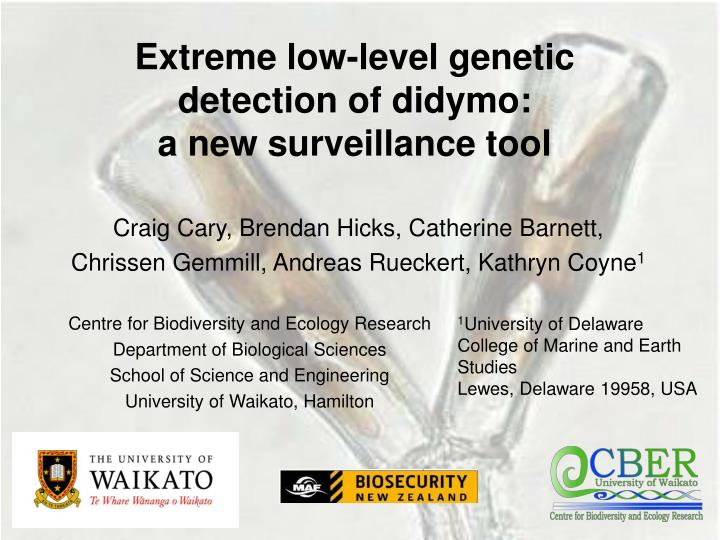 extreme low level genetic detection of didymo a new surveillance tool n.