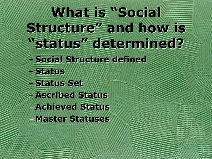 What is social structure and how is status determined