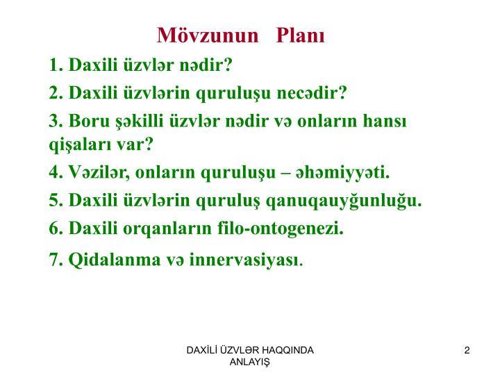 Mövzunun   Planı