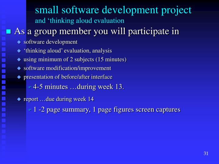 small software development project