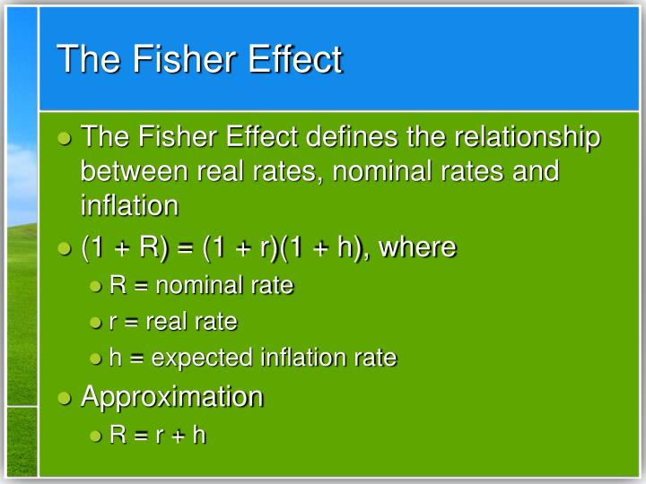 The Fisher Effect