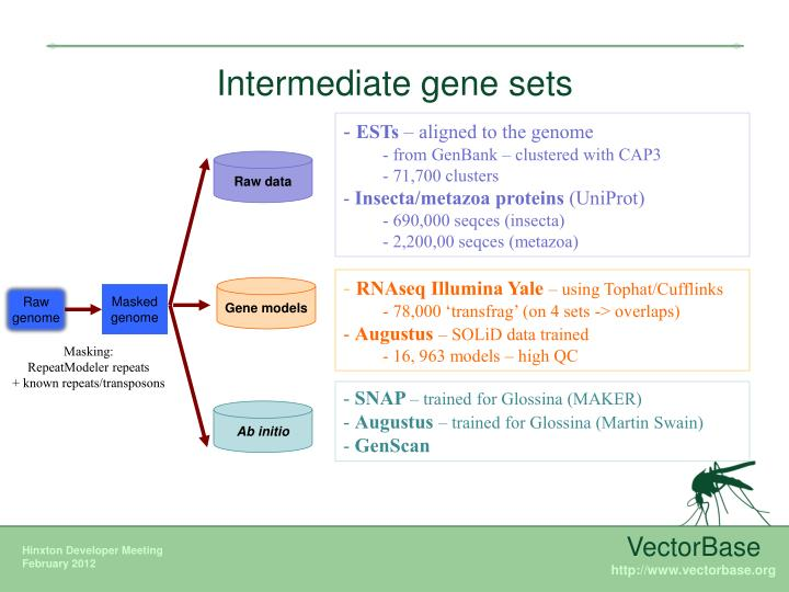 Intermediate gene sets