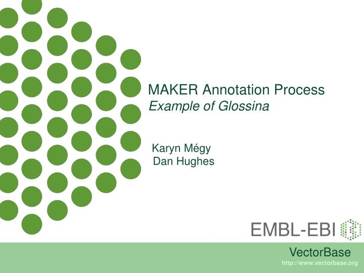 MAKER Annotation Process