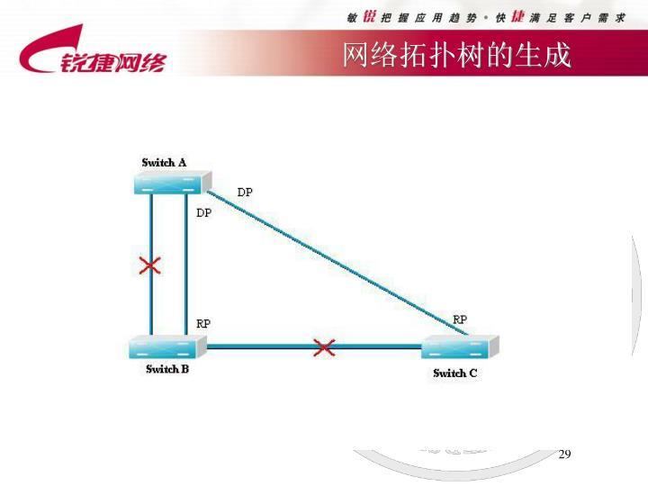 网络拓扑树的生成
