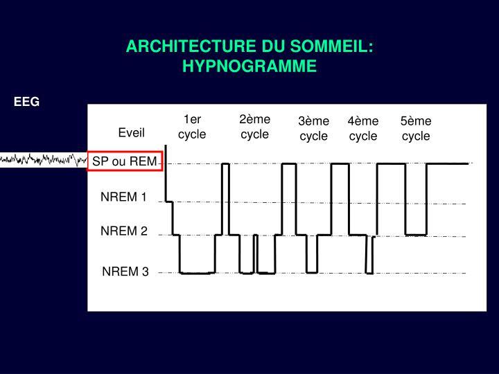 ARCHITECTURE DU SOMMEIL: