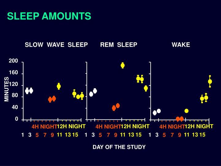 SLEEP AMOUNTS