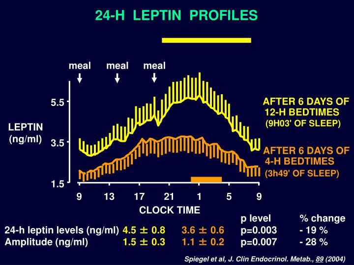 24-H  LEPTIN  PROFILES