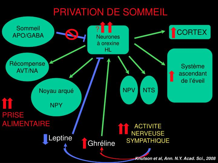 PRIVATION DE SOMMEIL