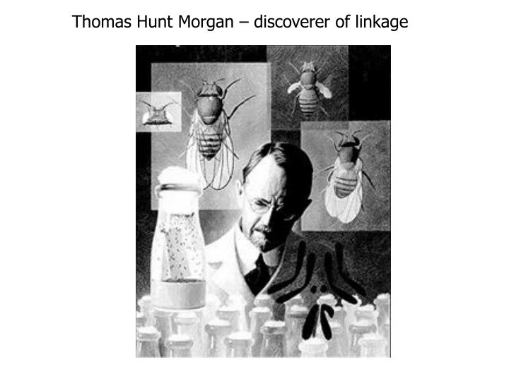 Thomas Hunt Morgan – discoverer of linkage
