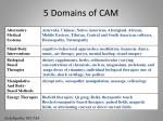 5 domains of cam