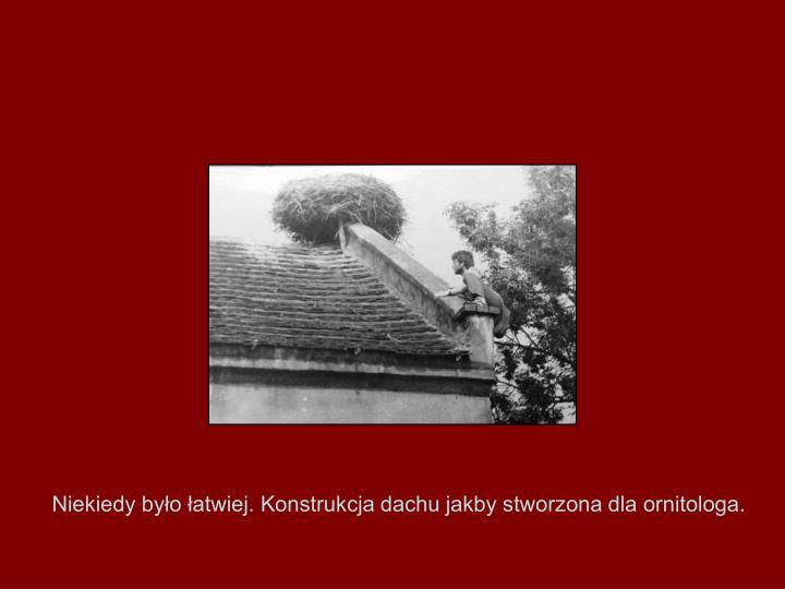 Niekiedy było łatwiej. Konstrukcja dachu jakby stworzona dla ornitologa.
