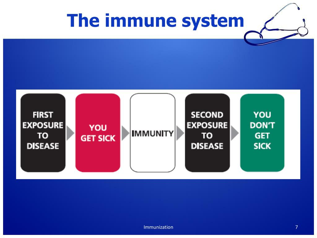 PPT - Immunization and vaccination PowerPoint Presentation ...