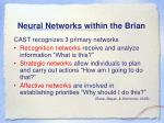 neural networks within the brian