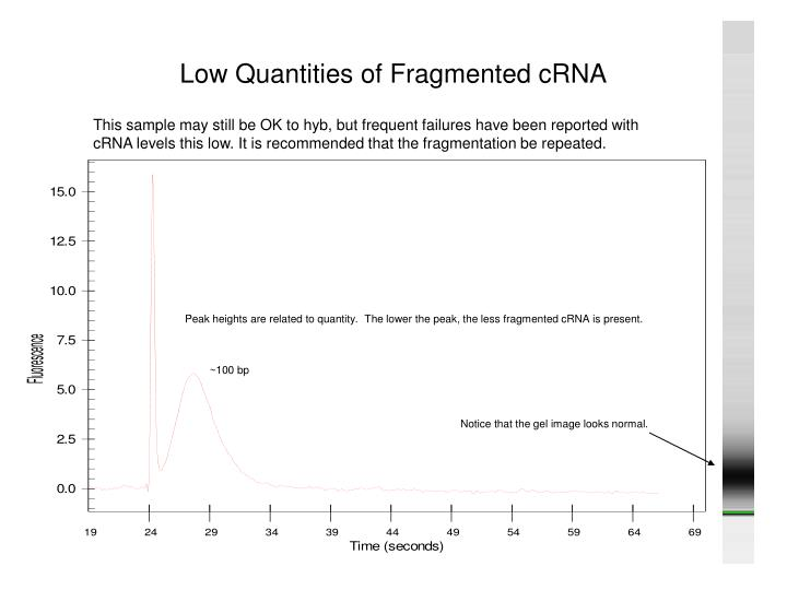 Low Quantities of Fragmented cRNA