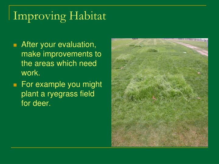 After your evaluation, make improvements to the areas which need work.