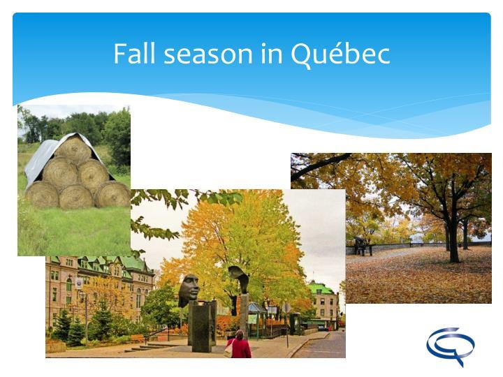 Fall season in Québec