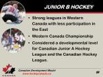 junior b hockey