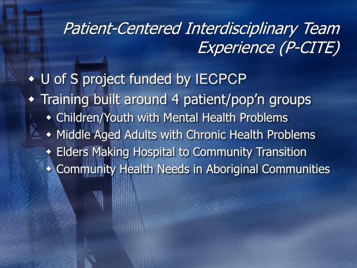 Patient-Centered Interdisciplinary Team Experience (P-CITE)