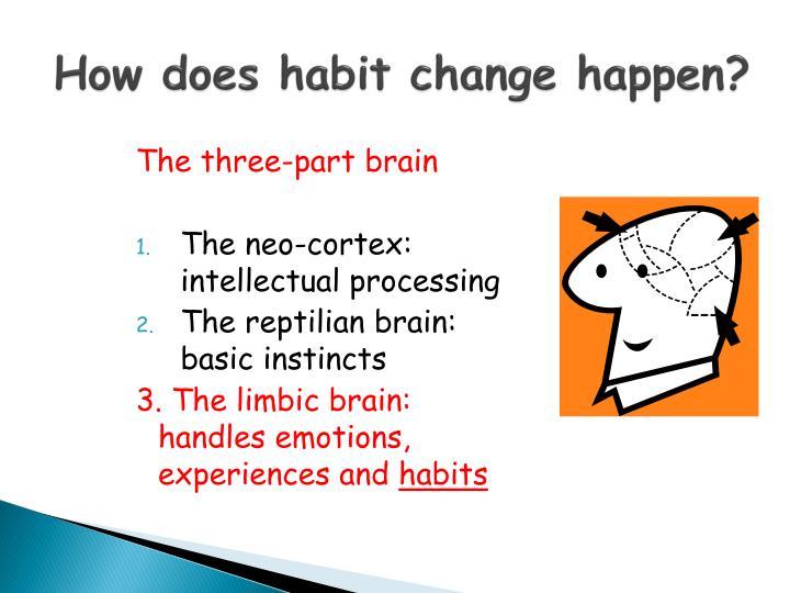 How does habit change happen?