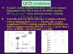 qcd evolution1
