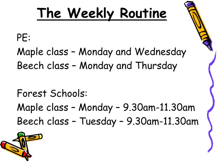 The Weekly Routine