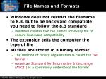 file names and formats1