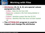 working with files1