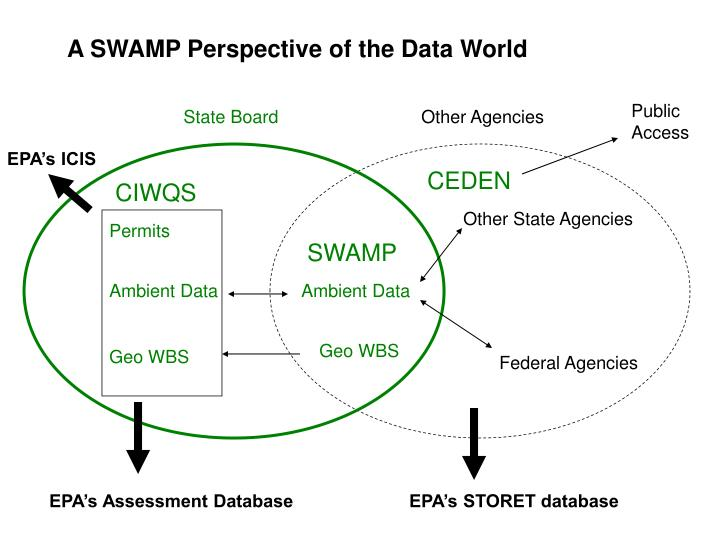 A SWAMP Perspective of the Data World