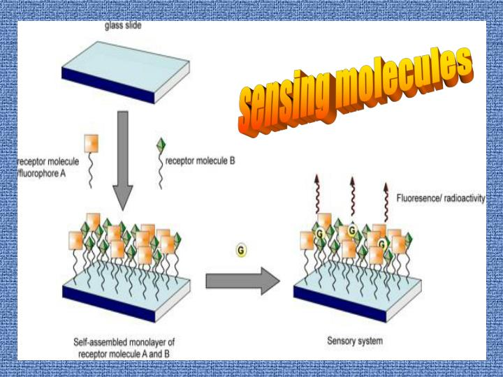 sensing molecules