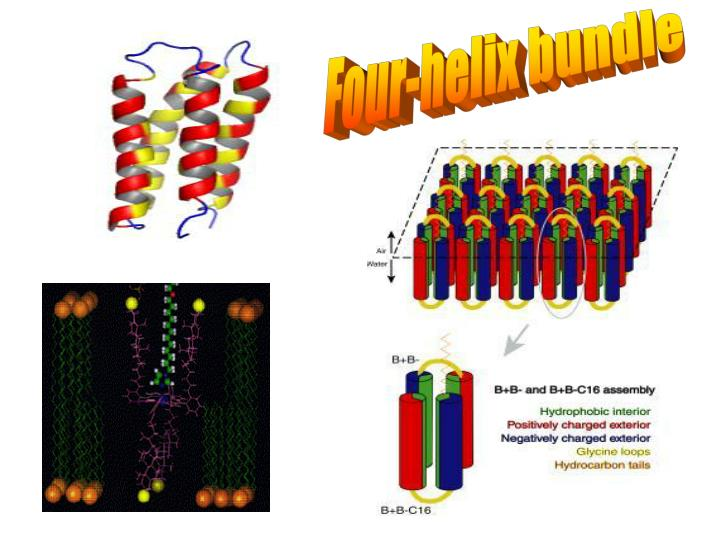 Four-helix bundle