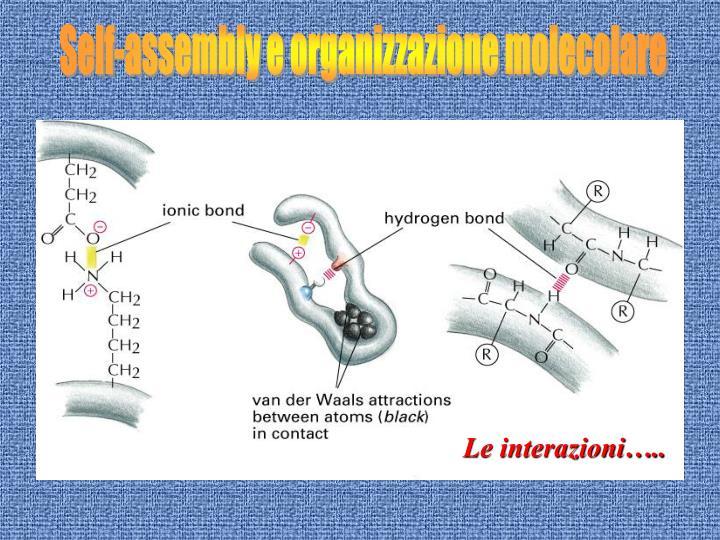 Self-assembly e organizzazione molecolare