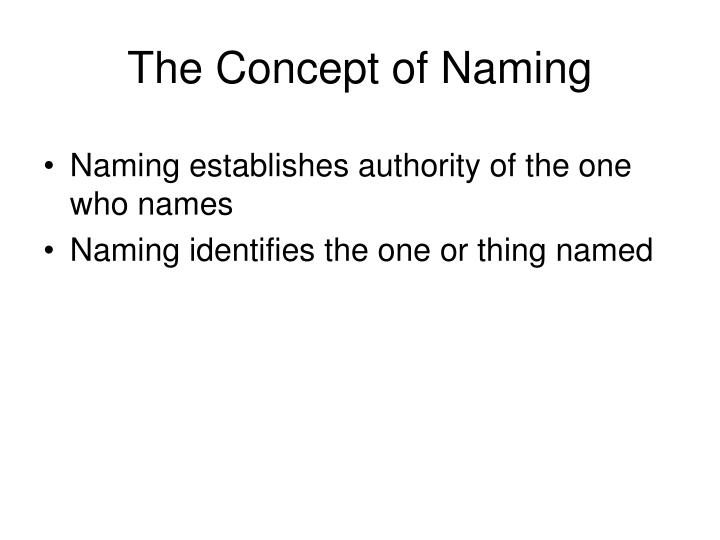 The Concept of Naming