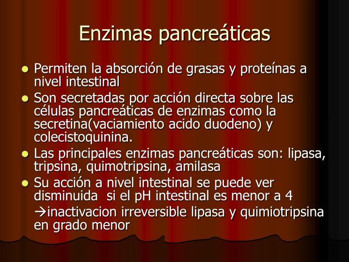 Enzimas pancreáticas