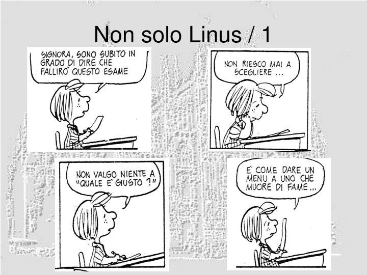 Non solo Linus / 1