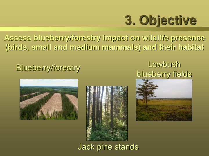3. Objective