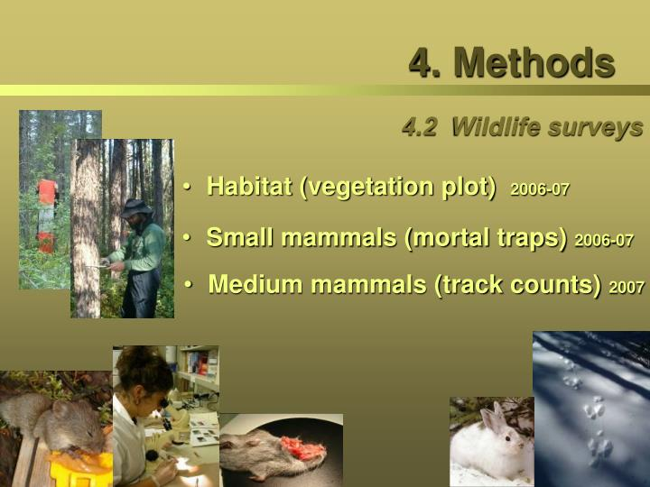 4.2  Wildlife surveys