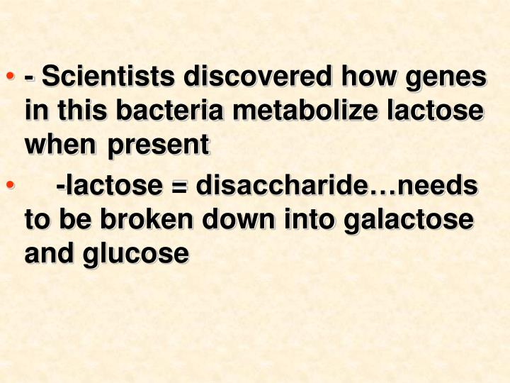 - Scientists discovered