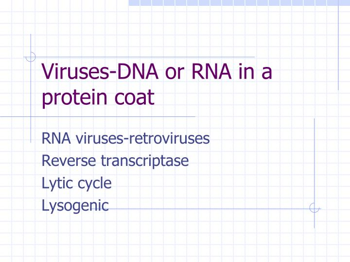 Viruses-DNA or RNA in a protein coat