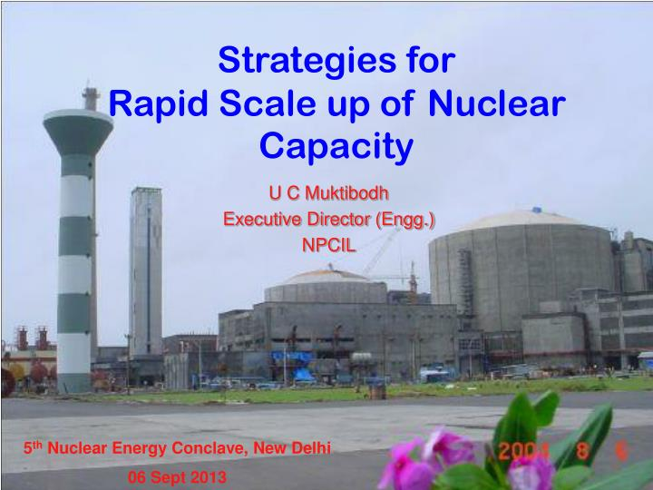 Strategies for rapid scale up of nuclear capacity