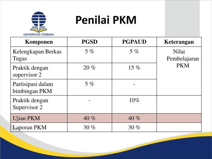 Penilai PKM