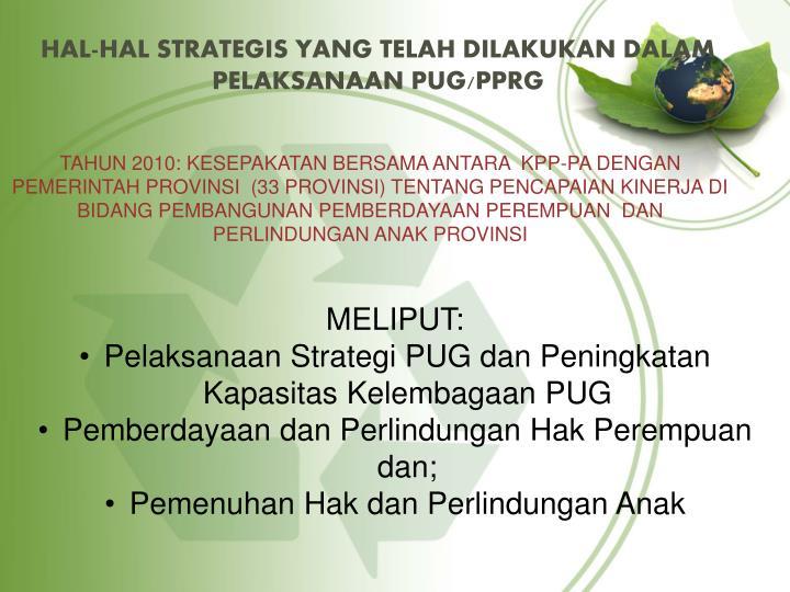 Hal hal strategis yang telah dilakukan dalam pelaksanaan pug pprg