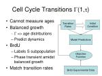 cell cycle transitions 1