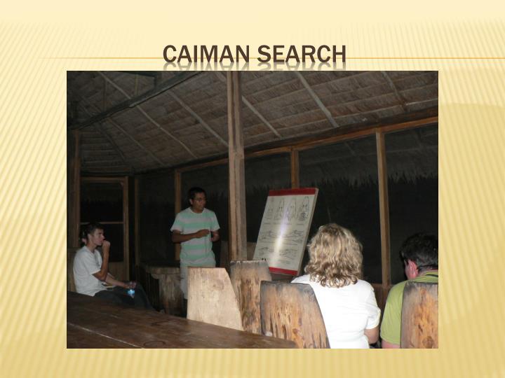 CAIMAN SEARCH