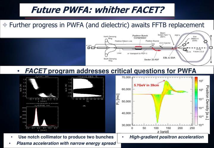 Future PWFA: whither FACET?