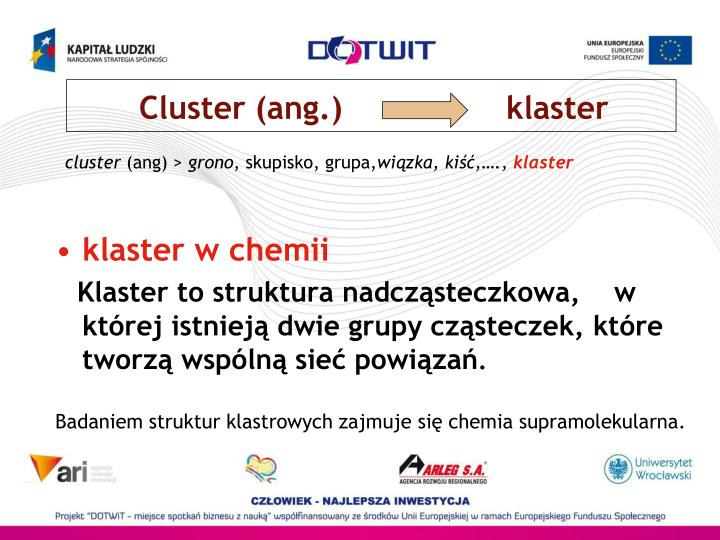 Cluster (ang.)                 klaster