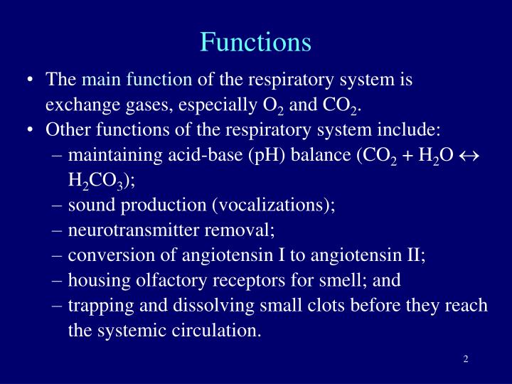The main function of the respiratory system is exchange gases, especially  O2 and CO2.